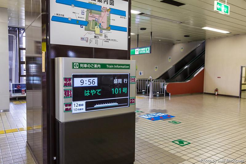 info trenes-37