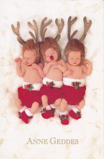 Anne Geddes Reindeer Babies Christmas Card Flickr