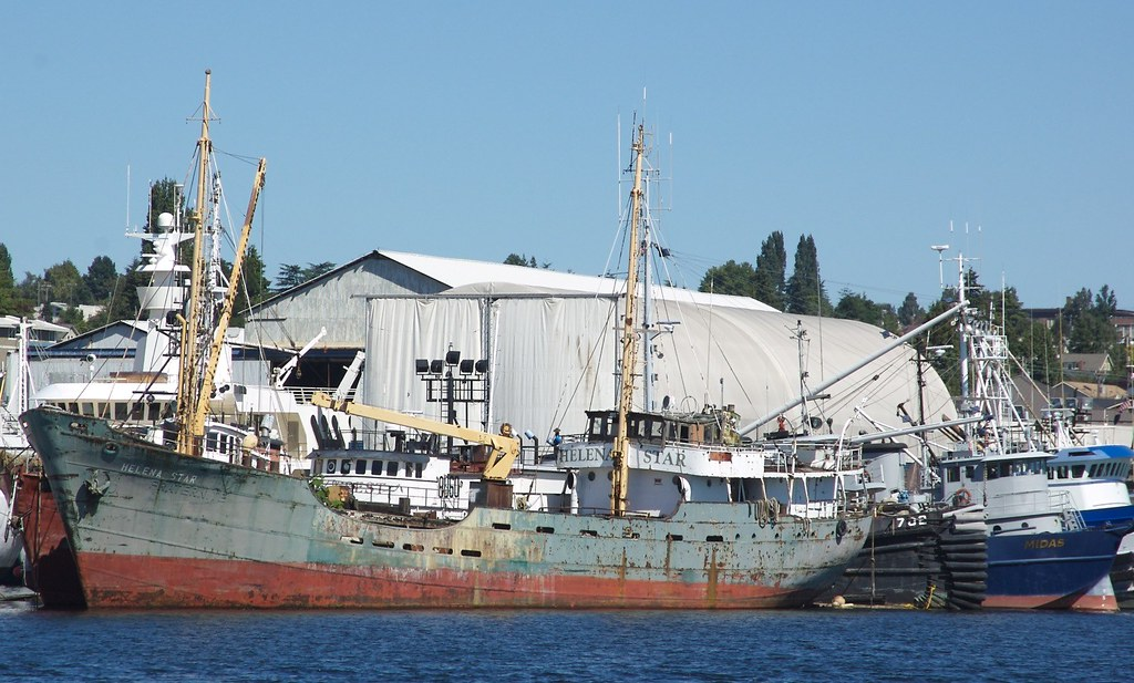 Tramp Steamer Just East Of The Ballard Locks In The Lake