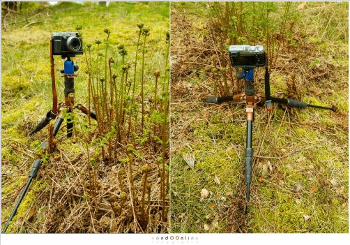 Hoog of laag bij de grond, de 3LT is flexibel in gebruik. Zoals een goed statief hoort te doen.