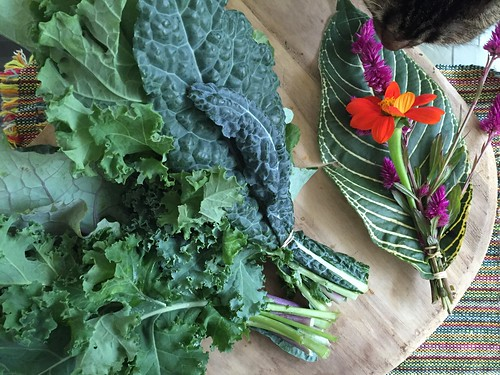 Farmers Market Mixed Kale