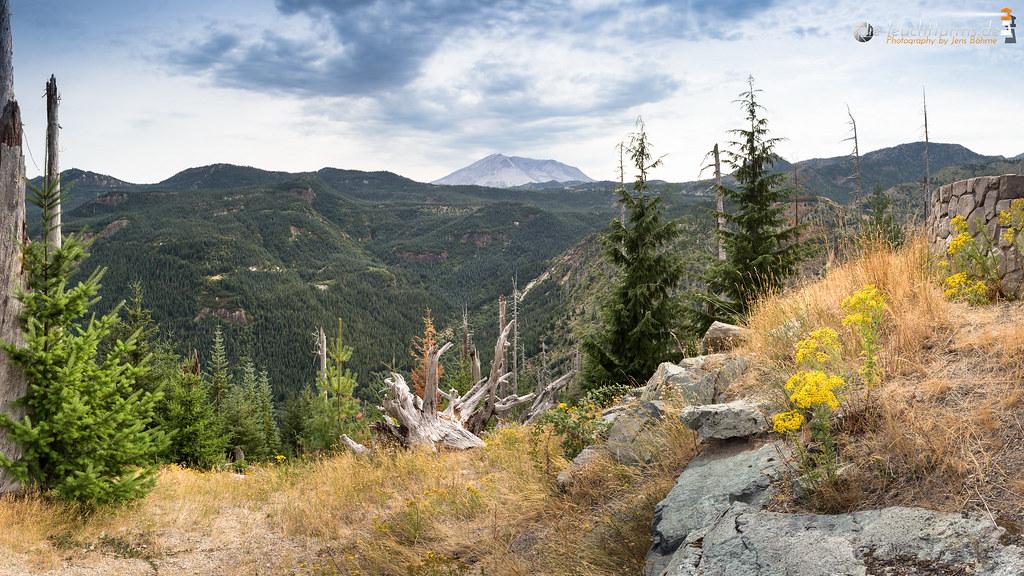 Edge of the Mount St. Helens blast zone