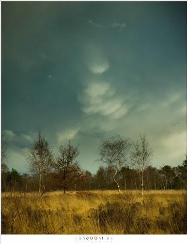 Als de wolken zwaar van water zijn, ontstaan er 'zakken' met water. Dit kan grillige vormen aannemen, veel grilliger dan wat hier zichtbaar is.