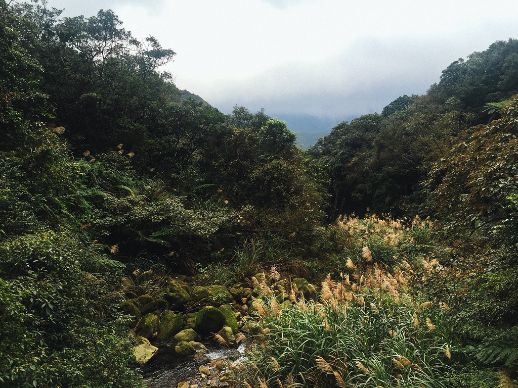 Senderismo cerca de Taipei