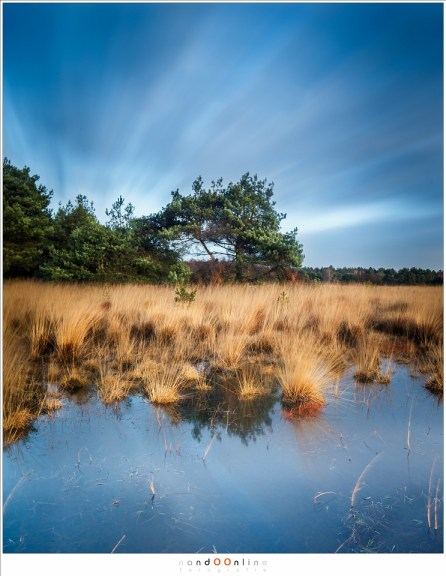 In het zonnetje (24mm - ISO50 - f/11 - t = 120sec - Haida ND3,0 i.c.m. soft GND0,6)