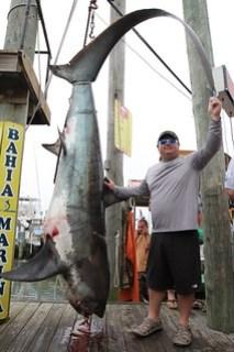 Photo of man with thresher shark