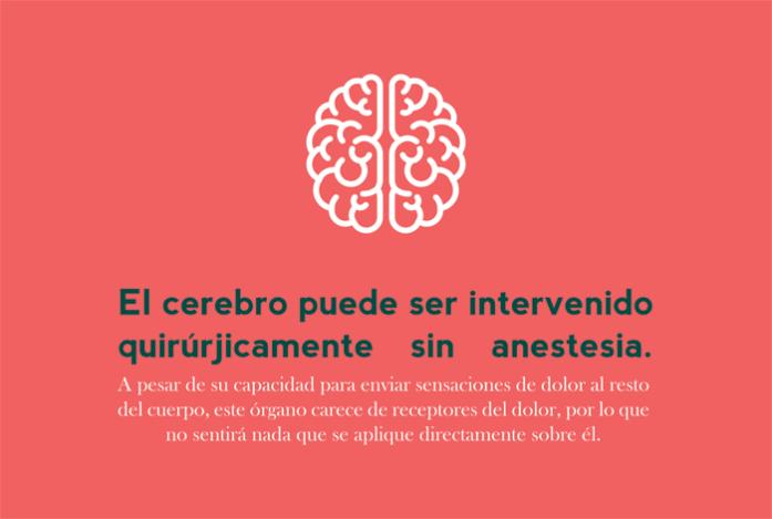 enero: el cerebro puede ser intervenido quirúrjicamente sin anestesia