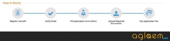 HITSEEE 2019 Application Form