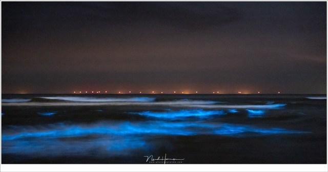 De branding, met de lichten van de zeevonk in de golven, en de windmolens op de horizon, gevangen in één enkele opname. (90mm | ISO6400 | f/4 | 4 sec)