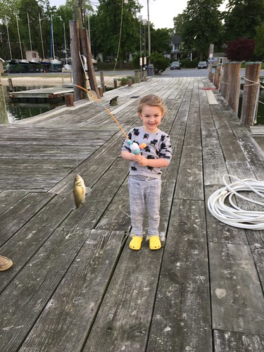 Photo of Little girl with white perch