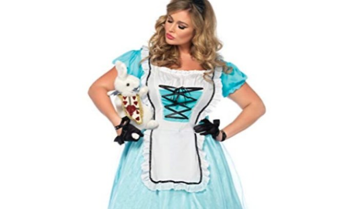 cheap plus size Halloween costume