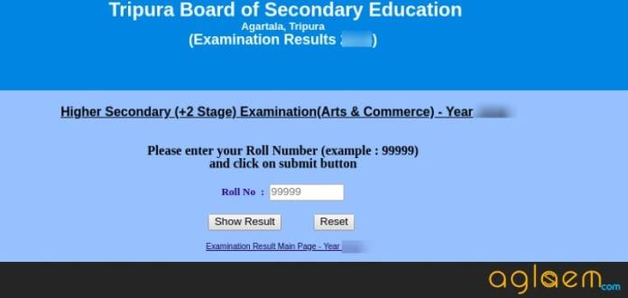 TBSE HS Result 2019