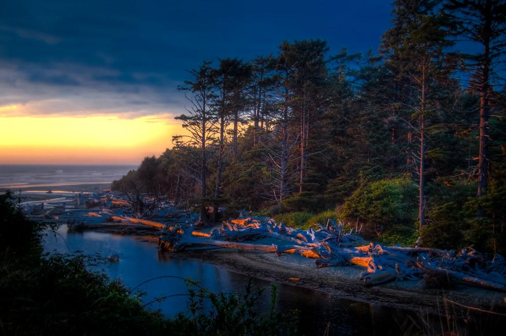 Kalaloch Beach At Sunset Washington Coast Copyright