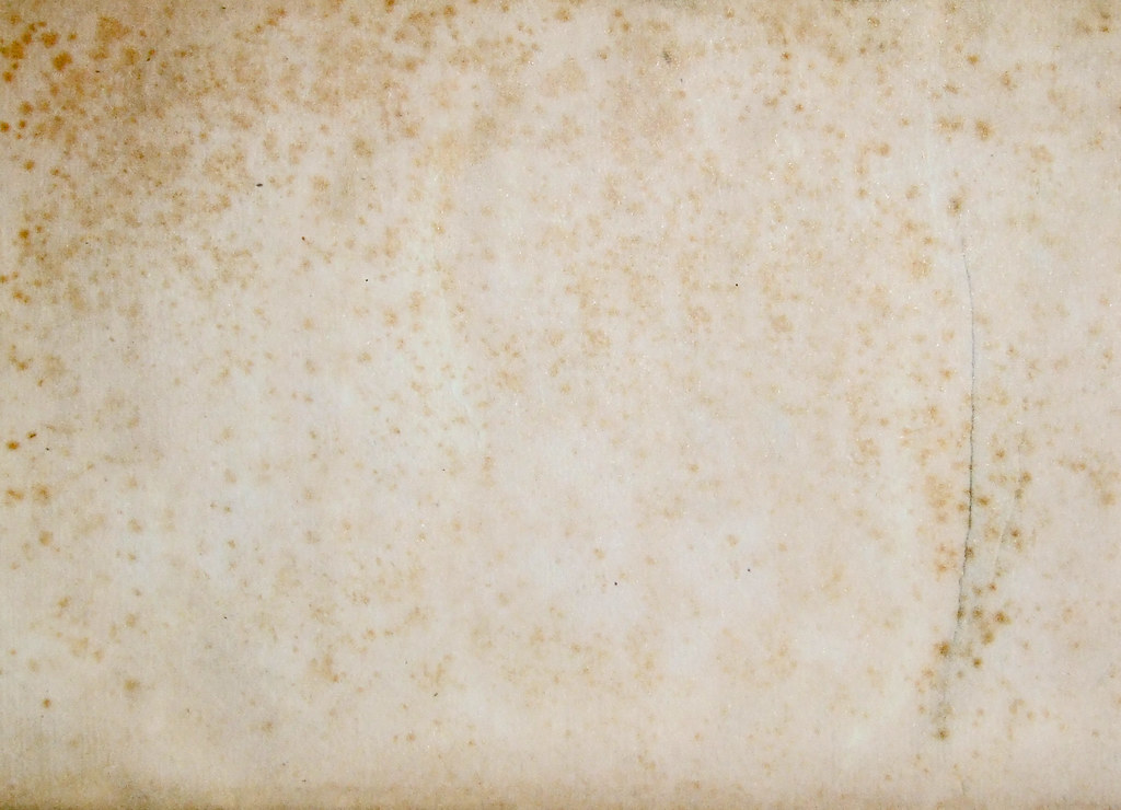 Motley Paper Sepia Handmade Texture Available For