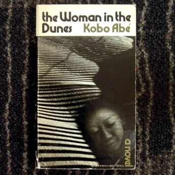 Image result for The Woman in the Dunes book