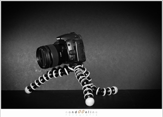 Canon EOS 20D met de EF 35mm f/1,4L USM: een echt standaard objectief zoals het in het analoge tijdperk was.