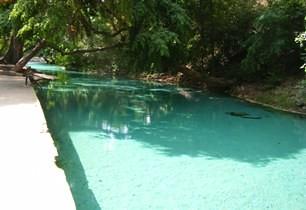 Hot Springs At Yankari Games Reserve You Can Read More