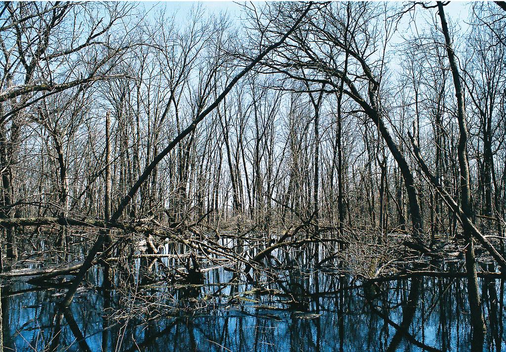 416005 23 Wehr Nature Center Whitnall Park Hales