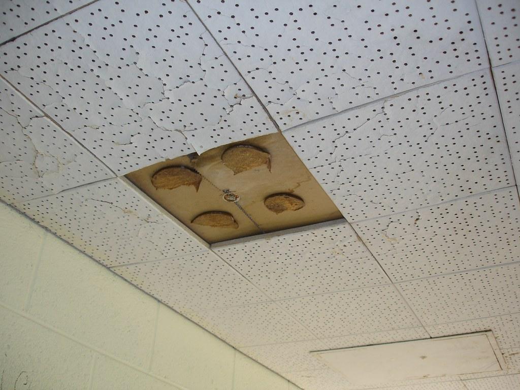 Ceiling Tile Asbestos Adhesive