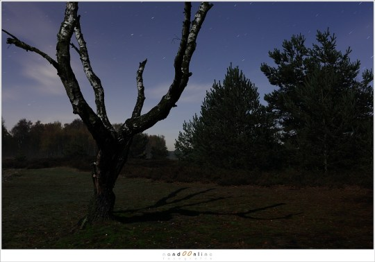 Deze opname heeft een belichtingstijd van 2 minuten en ISO400.  Het laat de sterren wel als streepjes op de foto verschijnen, maar er staan door die lange sluitertijd niet méér sterren op de foto.