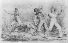 Fugitive Slaves Recaptured: 1850