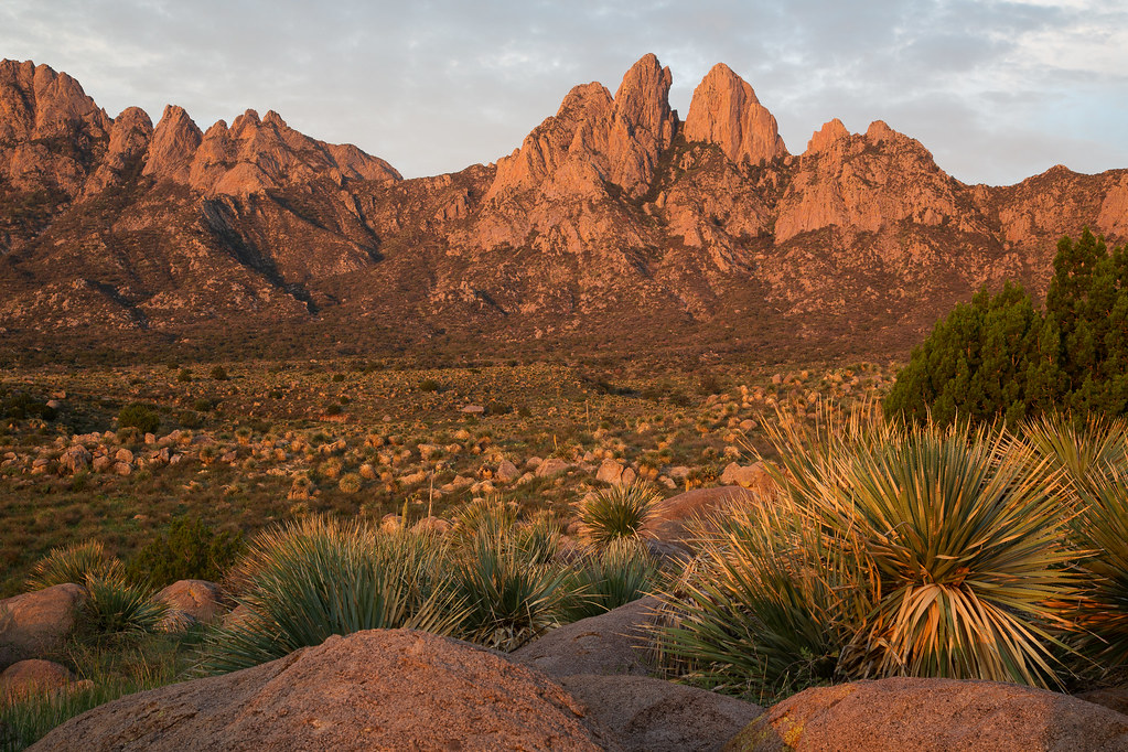 Organ Mountains Wsa The Organ Mountains Wsa Is Located