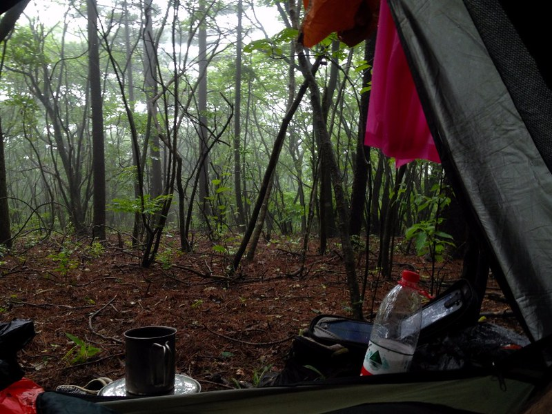 camping in the forest on huangshan mountain in china
