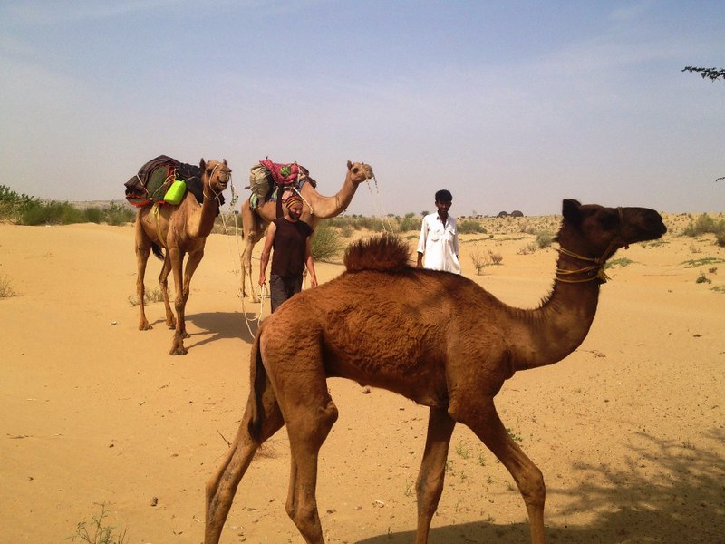 traveling in thar desert