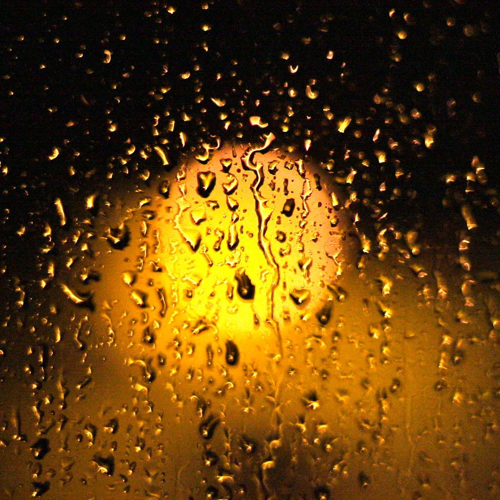 Rain Bokeh Rain Bokeh Kevin Dooley Flickr