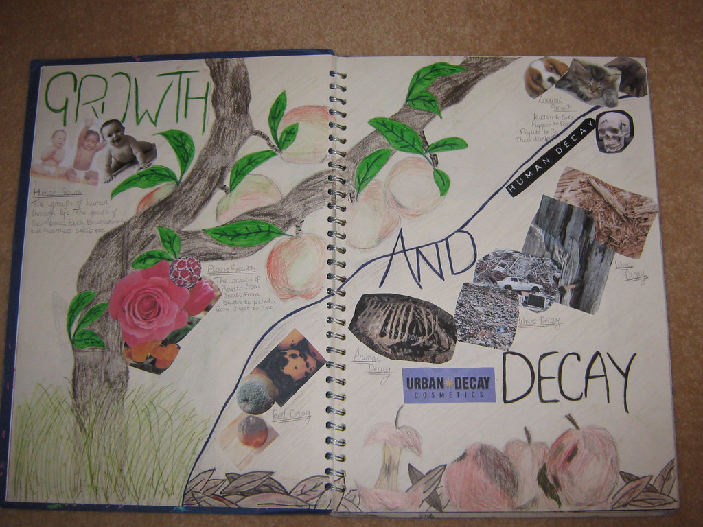 Gcse Project Growth And Decay