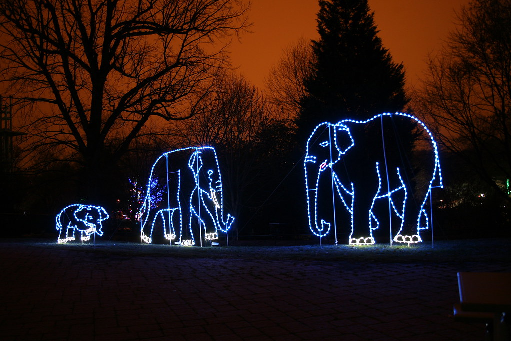 Zoo Lights National Zoo