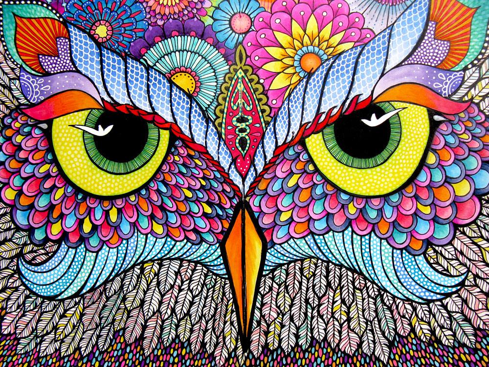 Moleskine8 Owl Face Hello Angel Creative Flickr