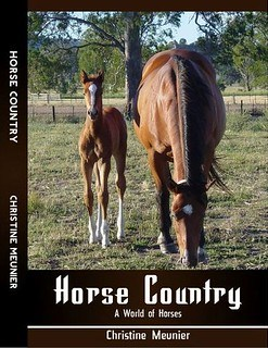 Horse Country - A World of Horses by Christine Meunier