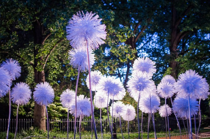 Missouri Botanical Garden Sculpture
