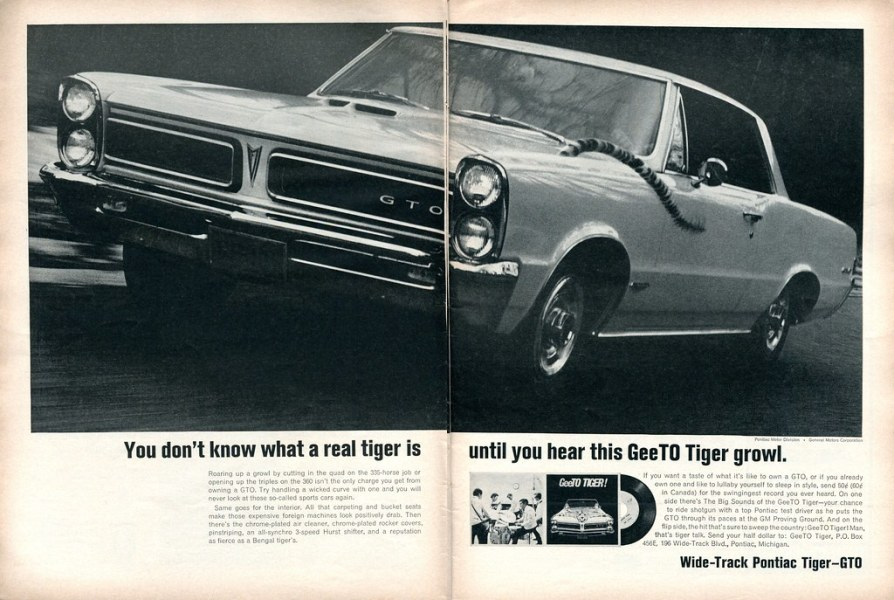 1965 pontiac cars » 1965 Pontiac GTO Tiger Advertisement Road   Track June 196      Flickr