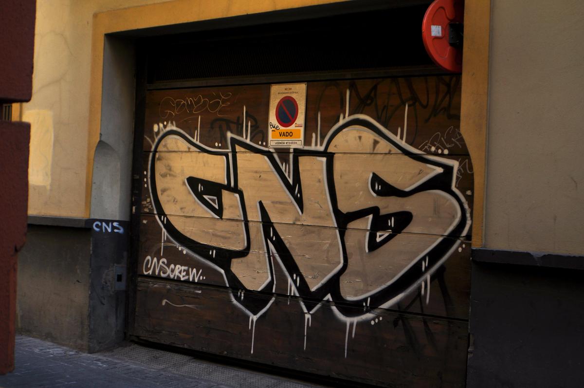 CNS (2)