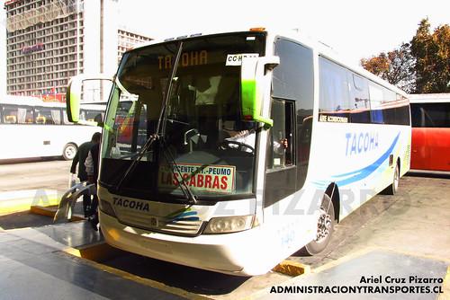 Tacoha - Santiago - Busscar Vissta Buss LO / Mercedes Benz (CCHP32)
