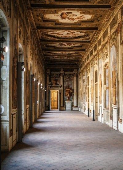 La Grande Galleria, Palazzo Arese Borromeo