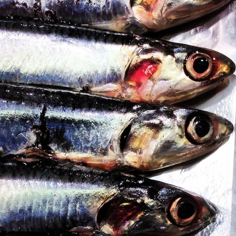 Colores vivos en los pescados frescos.