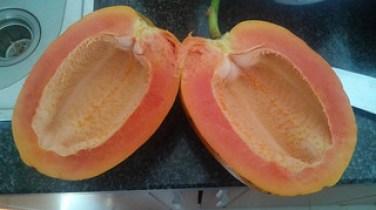 Papaya Inside
