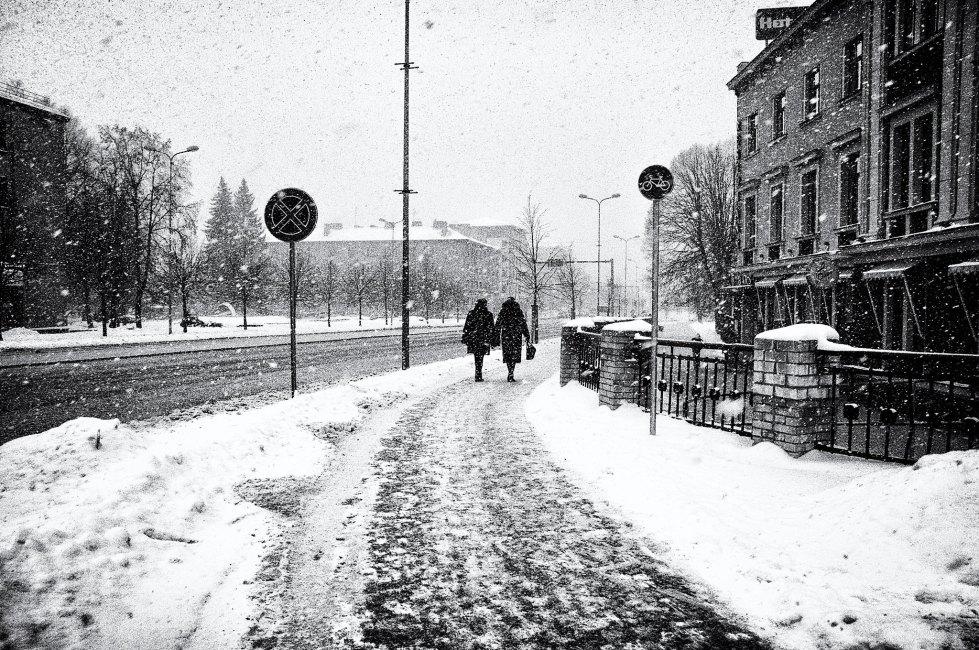 Intensiivi snieg 16.01.2016