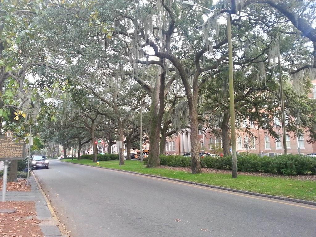 East Bay Street by Emmet Park, Savannah, GA