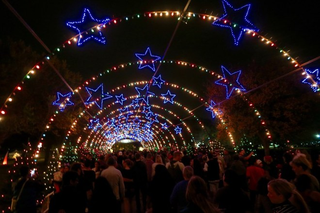 under the star lights