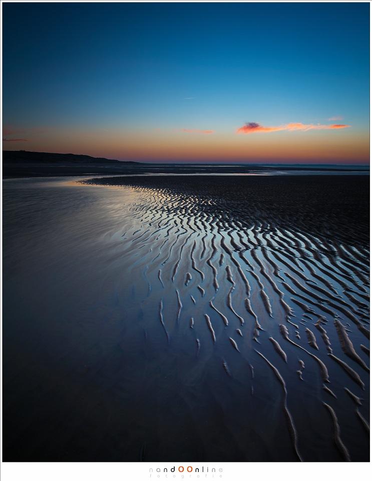 Patronen in het zand... Een dagje op de Maasvlakte