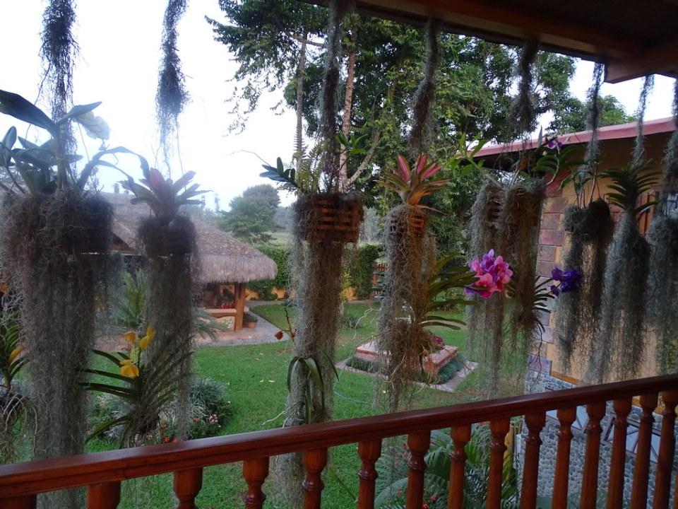 Flores Hacienda La Danesa Naranjito Ecuador 04
