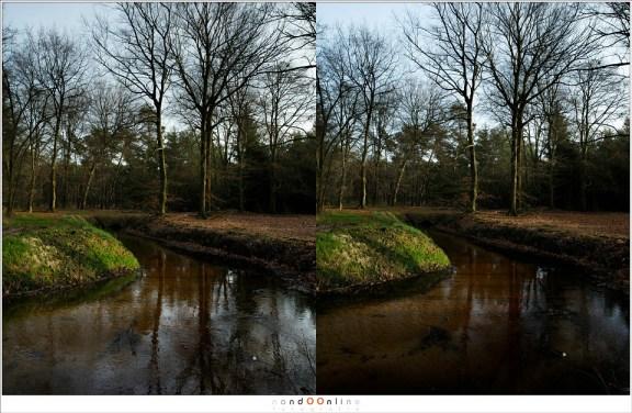 Boven is zonder polarisatie, onder met maximale polarisatie. De foto zonder polarisatie geeft een hele open uitstraling. Als de reflectie weg is wordt de foto aan de onderzijde veel te donker. Zonder polarisatie is in dit geval beter, hoewel er naar smaak van de fotograaf ook een tussenweg gezocht kan worden.