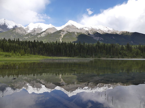 Things to do in Banff and Jasper: Kootenay National Park and Lake Dog