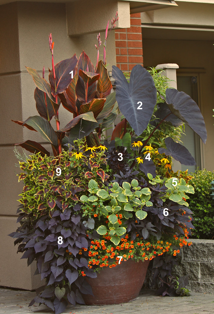 Pot Plant Containers