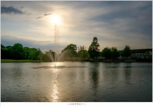 Met de zon recht in beeld. (X-Pro 2 met XF10-24mmF4 R OIS @ 24mm, velvia film simulation)