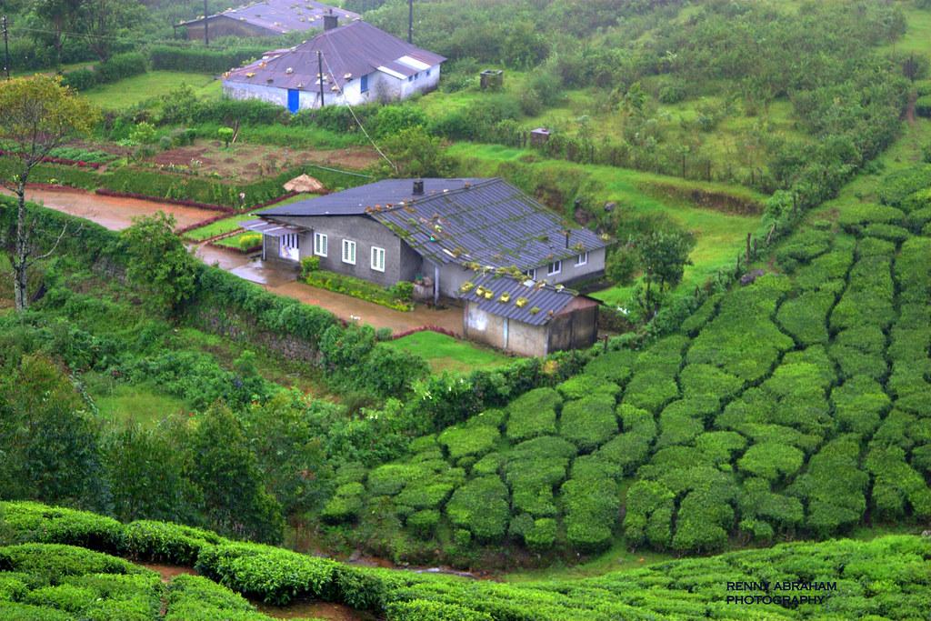 Munnar India View From Lockhart Gap On Way From Devikula Flickr